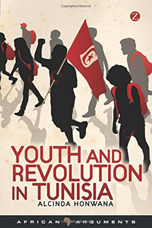 Youth and Revolution in Tunisia (African Arguments) By Alcinda Honwana